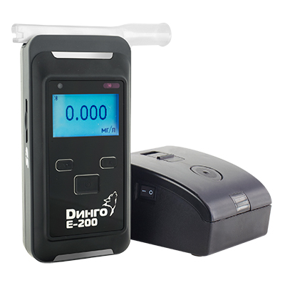 dingoe200b norm2 - Динго E-200B с принтером